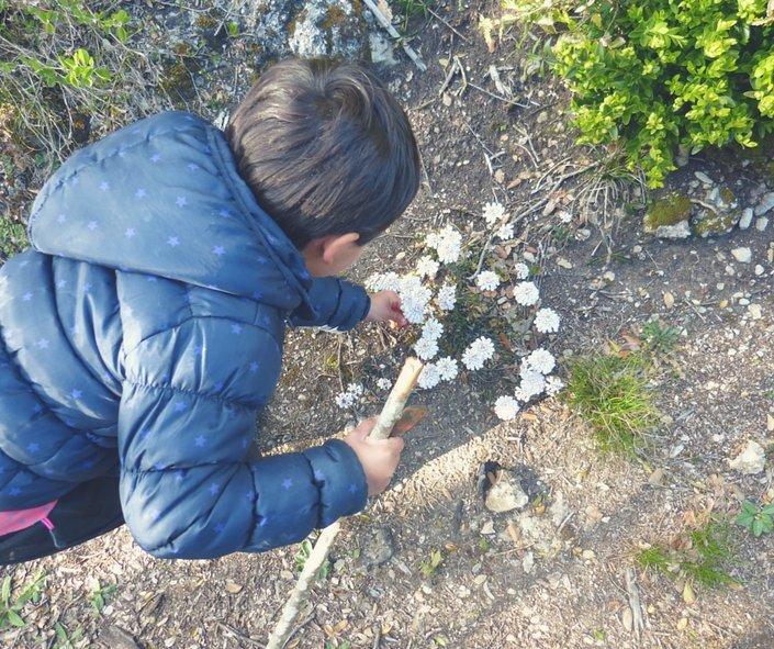 niños disfrutando de la naturaleza