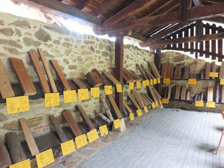 rsz_museo_madera